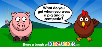 Pig Joke for Kids