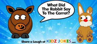 Rabbit Joke