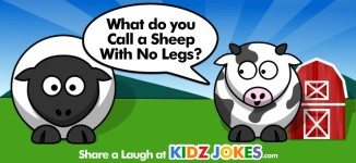 Sheep Joke
